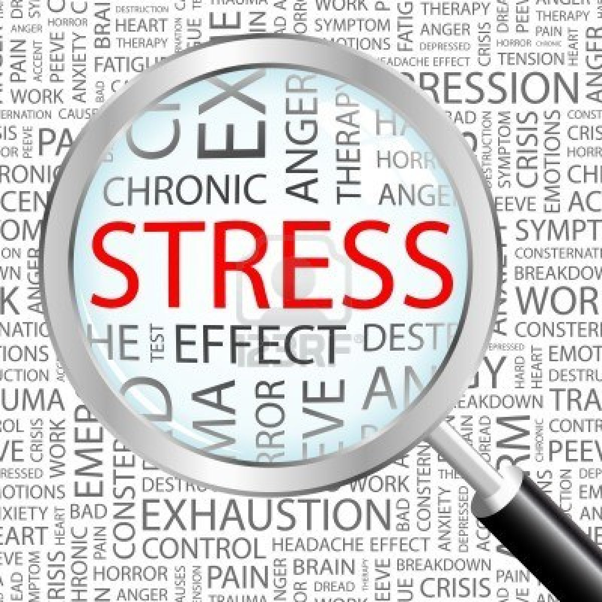 essay about effects of stress on health
